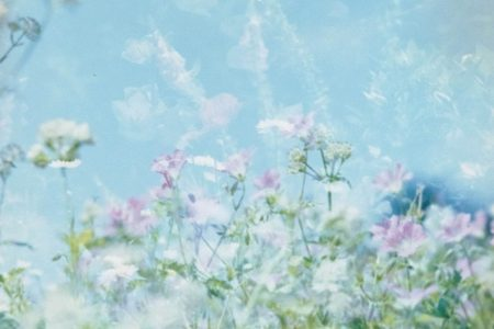 flower fields - Preparing for the Fourth Trimester